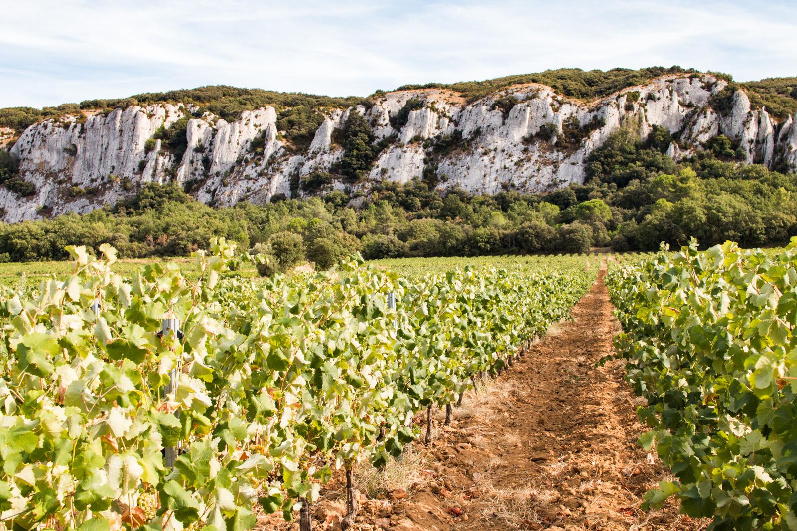 Côtes-du-Rhône, Lirac, Tavel, Laudun...